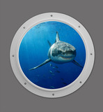 Photo Mural se-df064_2ft_porthole by David Fleetham